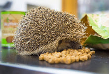 Load image into Gallery viewer, Brambles Crunchy Hedgehog Food- 900g - Bells Gardening