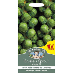 Brussels Sprout Brodie F1 Seeds- By Mr Fothergills
