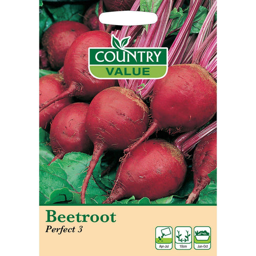 Beetroot Perfect 3 Seeds- By Country Value