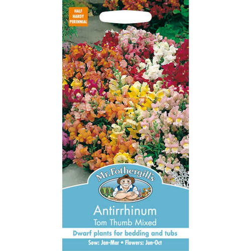 Antirrhinum Tom Thumb Mixed Seeds- By Mr Fothergills