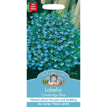 Load image into Gallery viewer, Lobelia Caimbridge Blue Seeds- By Mr Fothergills