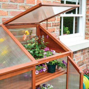 Hardwood Mini Greenhouse By Rowlinson