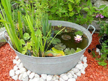 Load image into Gallery viewer, Original Vintage Large Oval Ribbed Tub - Bells Gardening