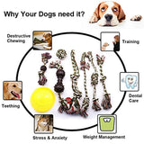 AMOMI PET Dog Toy Pet Chewing Set Highly Durable Interactive Doll, TPR Flying Disc, Ropes with Thorn Ball, Teething Puppy Chewer for Medium Large Breeds' Dental Health, Gift of 8 Pcs
