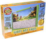 Uncle Milton Giant Ant Farm - Large Viewing Area