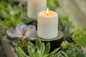 Do Citronella Candles Repel Mosquitoes?