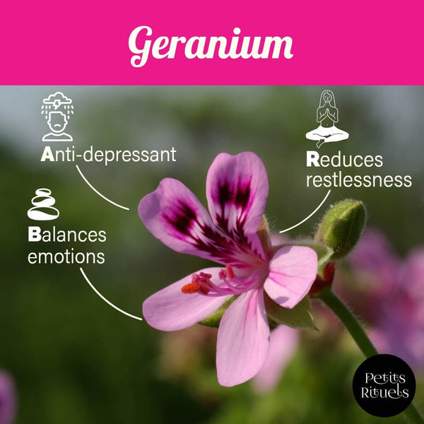 Geranium essential oil emotional benefits.