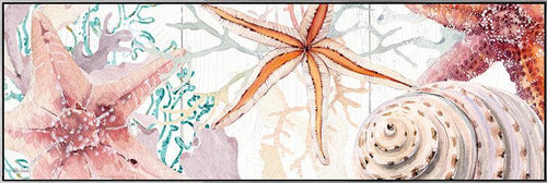 Shadow Framed Painting 50x150 Starfish