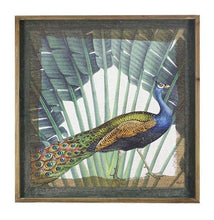 Load image into Gallery viewer, Framed Print 60x60 PEACOCK