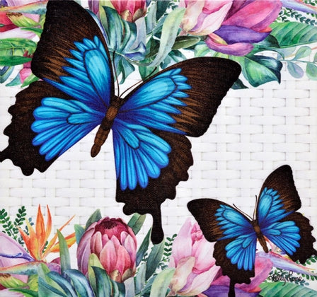 Fiesta Butterfly Canvas 20 x 20inch Wall Decor