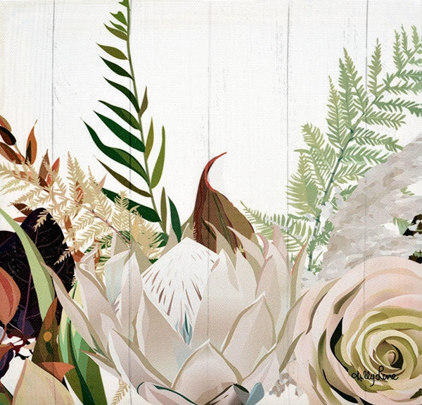 Natives Protea Canvas 20x20 cm By Kelly Lane Pazaz Online