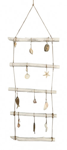 Reef Shells Wall Hanging 120x40x3 cm By Kelly Lane Pazaz Online