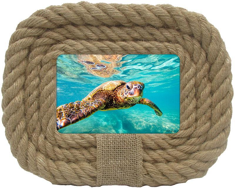 Photo Frame Turtles 20.5x25.5 6x4
