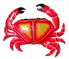 Load image into Gallery viewer, Beach Crab red Natursal Collection