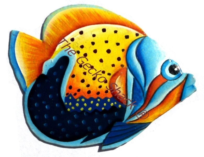 b. Large Tropical Coral Reef Fish 45cm