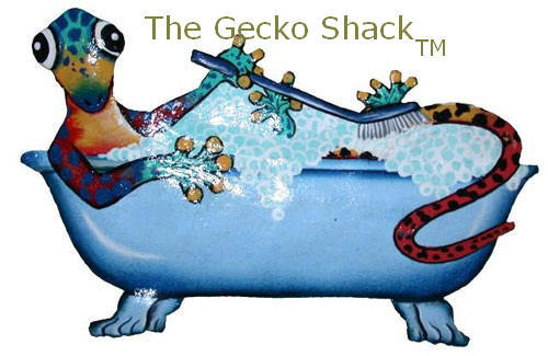 Gecko in the Tub 3
