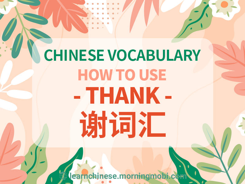 Learn Chinese Vocabulary how to use thank 谢词汇