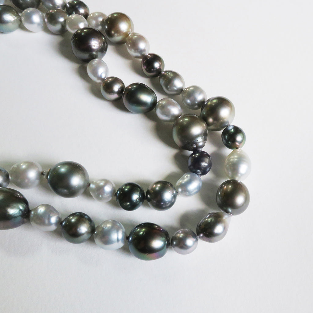 Close up pearl strand silver grey black Tahitian south sea pearls. White background.