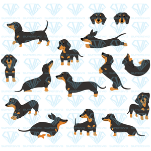 Dachshund Poses Dog Bundle, svg, png, dxf, eps file