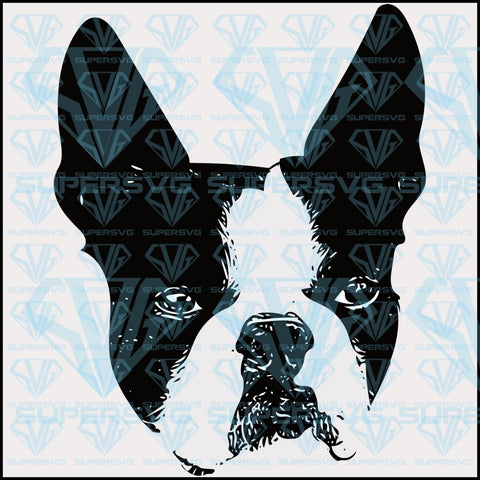 Boston Bull Terrier Face PNG Instant Download