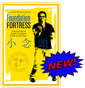Foundation Fortress By Sifu Gary Lam