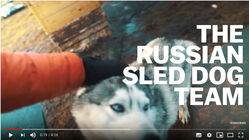 Are Huskies Russian? Depends On Who You Ask.
