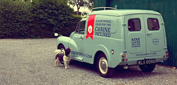 Dog looking up at light blue 1969 Morris Minor van with signwriting