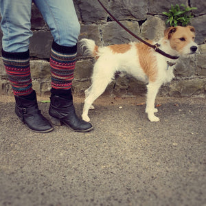 Fair Isle Gypsy Blue Leg Warmers - HOUNDWORTHY