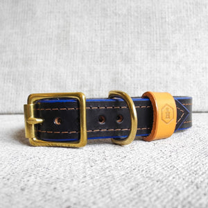 Luxury Blue Bridle Leather Dog Collar With Padded Lining - HOUNDWORTHY