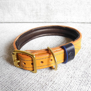 Tan Bridle Leather Dog Collar With Padded Lining - HOUNDWORTHY