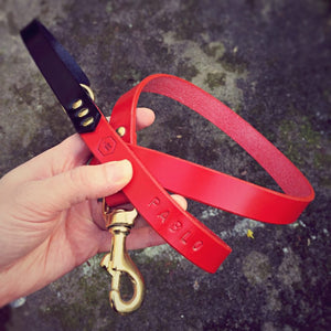 Red Bridle Leather Dog Lead Plain - HOUNDWORTHY