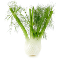 FENNEL - 1 PIECE