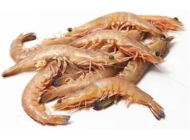 SEAFOOD - PRAWNS - ENDEAVOUR - 10/20 - 1KG - Singapore Deli and Grocer