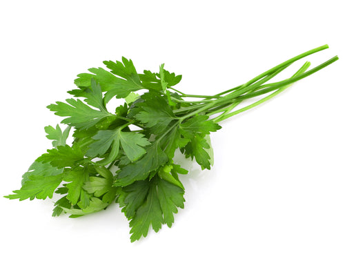HERBS - ITALIAN PARSLEY - 50GMS - Singapore Deli and Grocer
