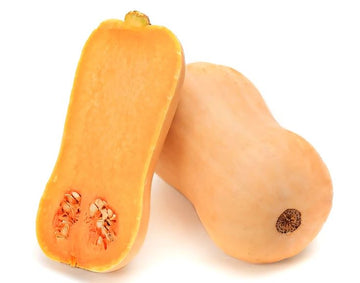 PUMPKIN - BUTTERNUT - 1 PIECE