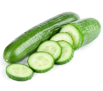 CUCUMBER - CONTINENTAL - 1 PIECE - UNLOVED