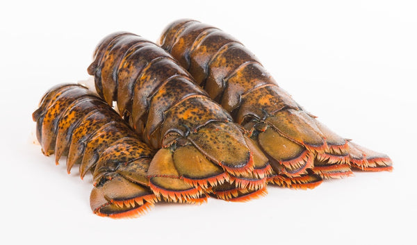 SEAFOOD - TROPICAL ROCK LOBSTER - TAIL (227-283GMS/PC) - Singapore Deli and Grocer