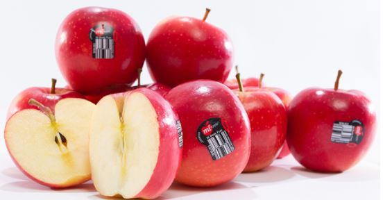 APPLES - MI APPLE - 6 PIECES