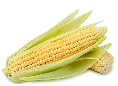 SWEET CORN - 2 PIECES - Singapore Deli and Grocer