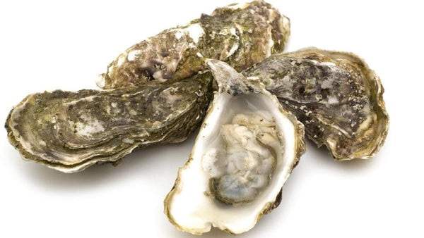 OYSTERS - TASMANIAN - 12PC (UNSHUCKED)