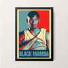 """The Black Mamba 