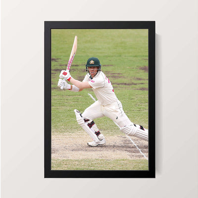 """David Warner"" Wall Decor"