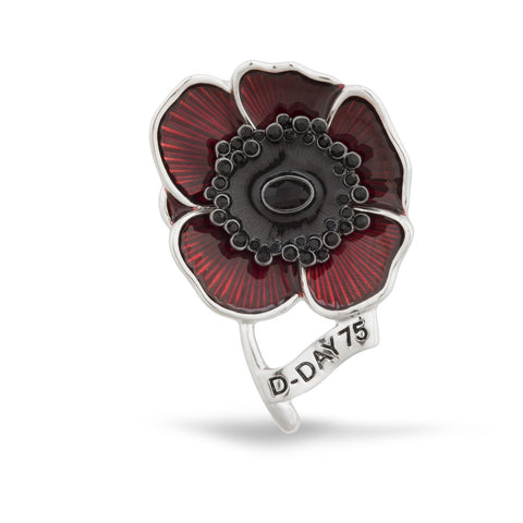D-Day 75 Brooch