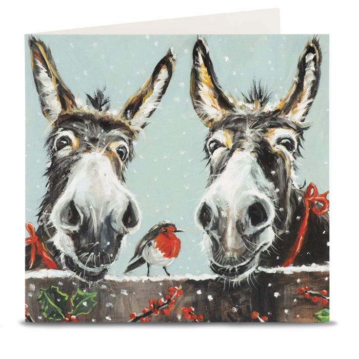 Donkey and Robin Christmas Cards