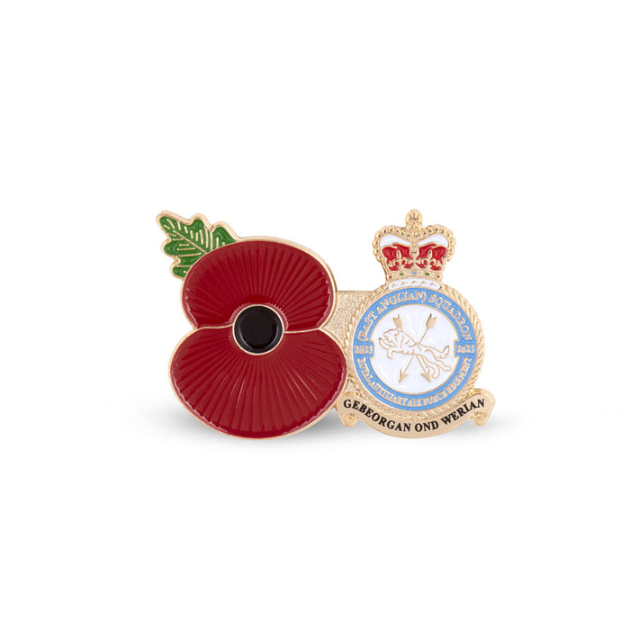Service Poppy Pin 2623 SQUADRON RAUXAF REGIMENT