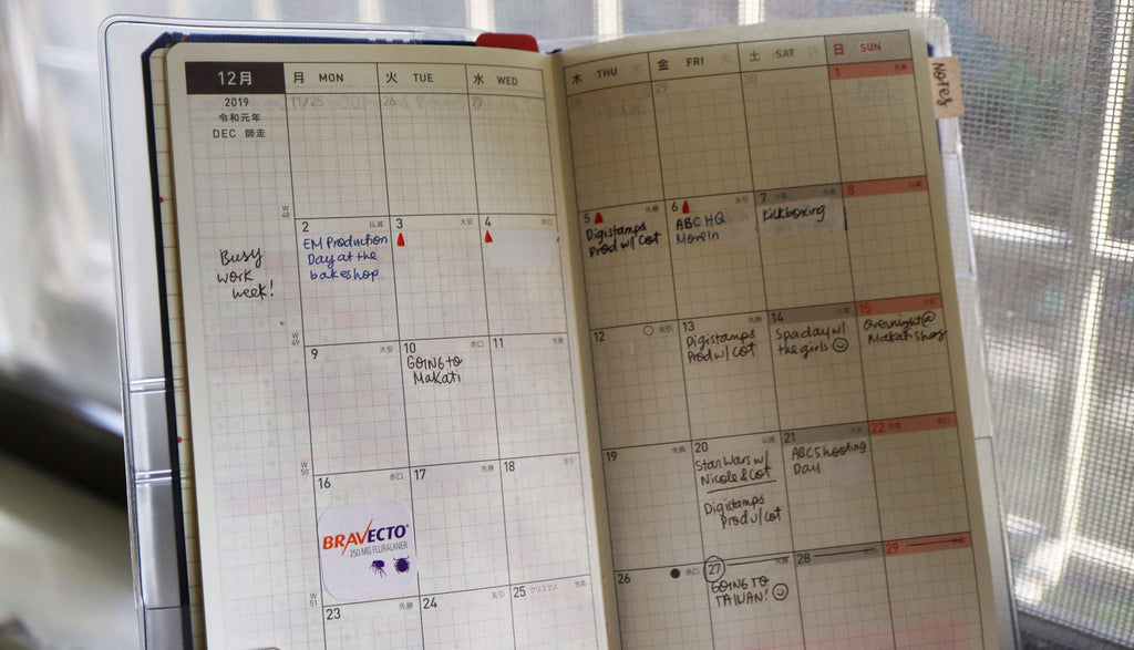 Image: A look into Sophie's planner, the monthly spread