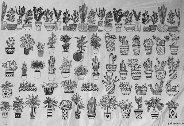 Potted Plants - Underglaze Transfer Sheet - You Choose Color
