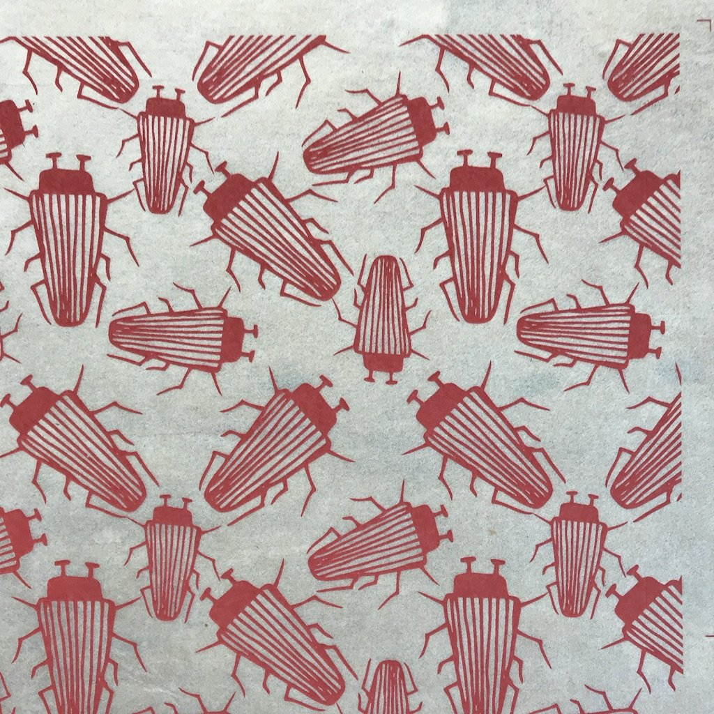 Beetles - Underglaze Transfer Sheet - You Choose Color