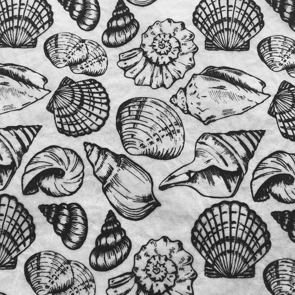 Shells Multi - Underglaze Transfer Sheet - Black