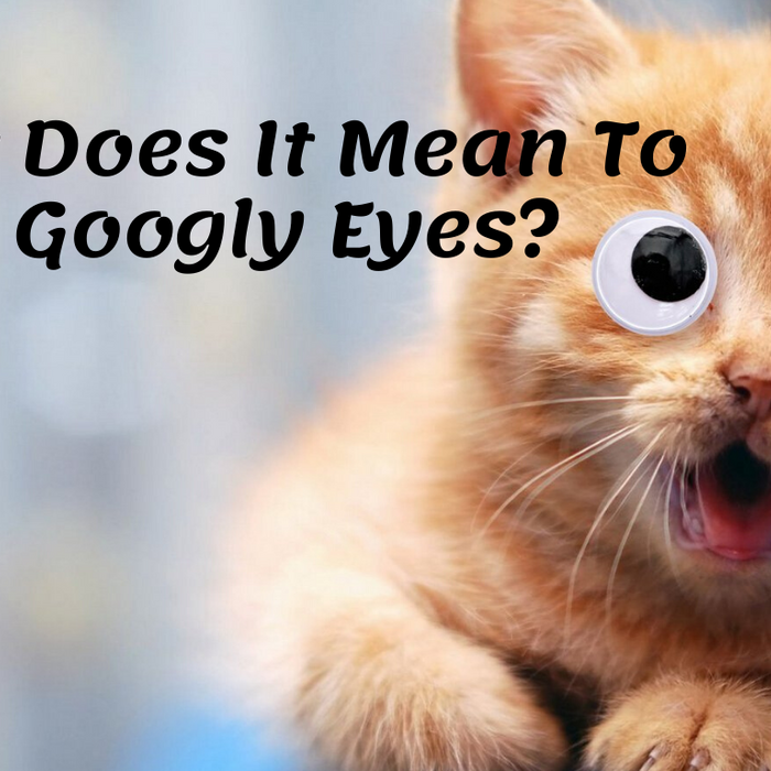 What Does It Mean To Have Googly Eyes?